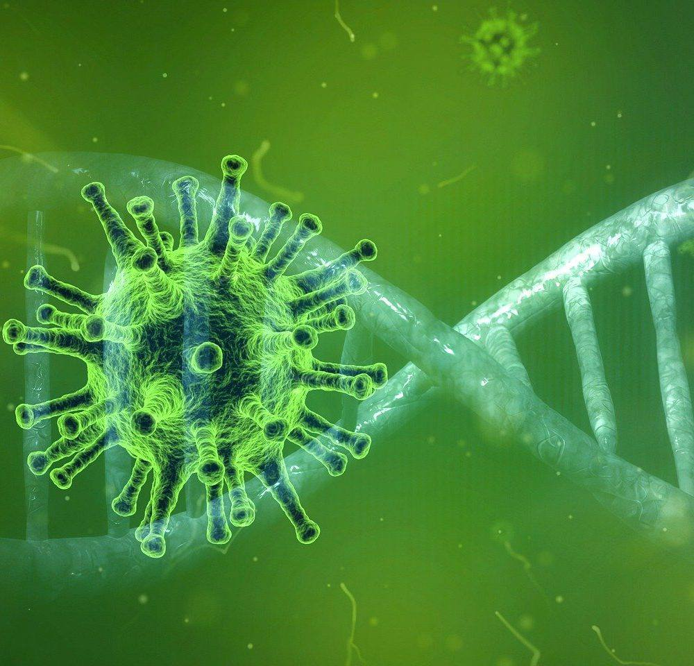 COVID 19 – czy catering jest dobrym rozwiązaniem w okresie pandemii?